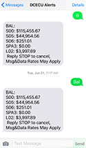Text Message Banking Screenshot